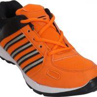 Zpatro Cricket Shoes(Orange)